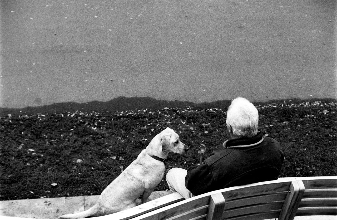 Man and the dog